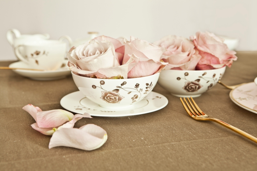 teacup-rose-dalani